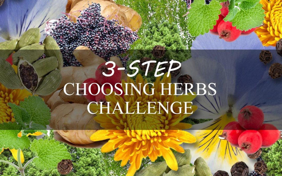 How to Choose the Right Herbs