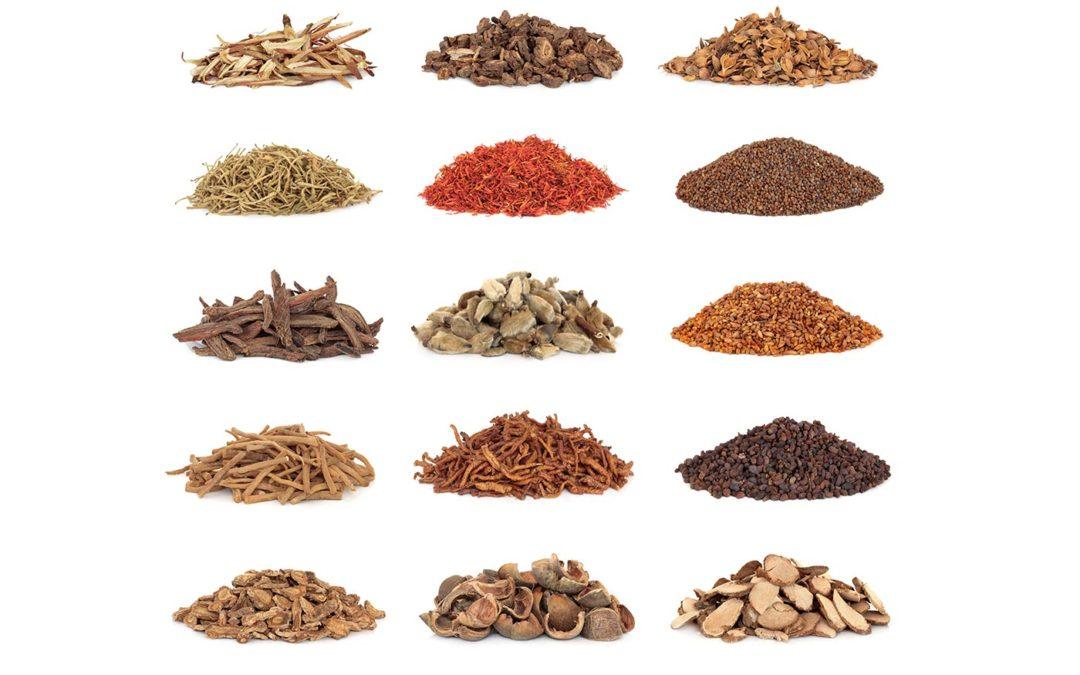 Examining Herbs: Functions, Botany & Folklore