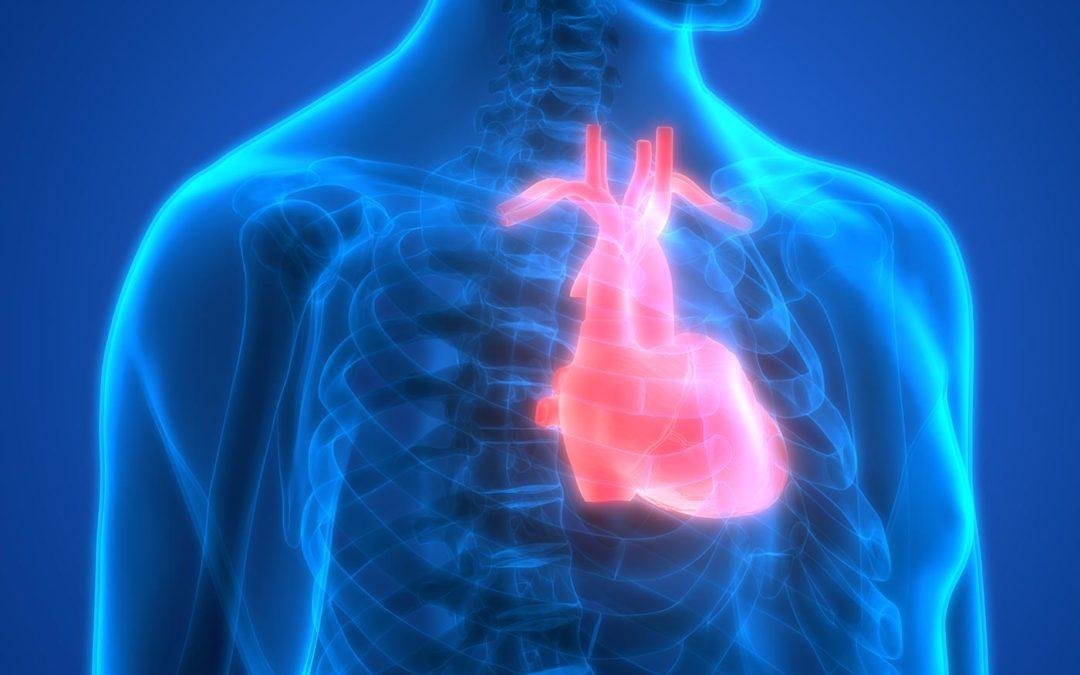 Natural Alternatives to Treat Heart Disease & Promote Heart Health