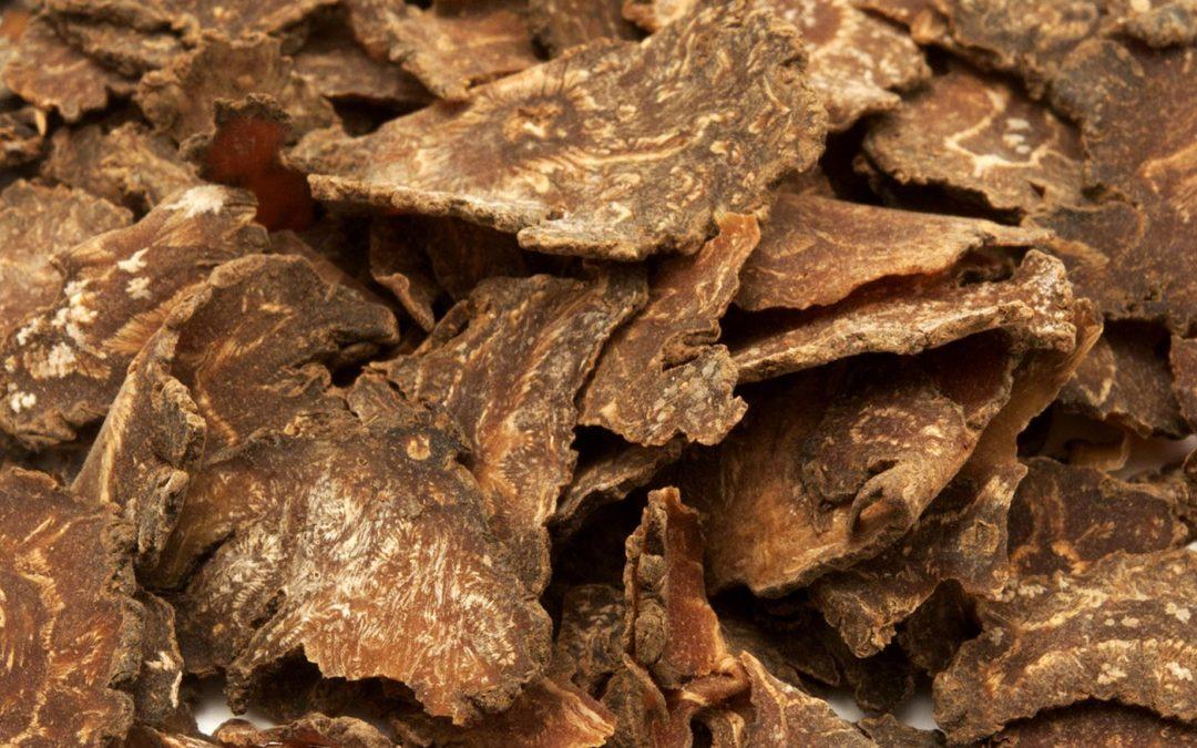 Be Healthy Series: Ligusticum (Chuan Xiong)